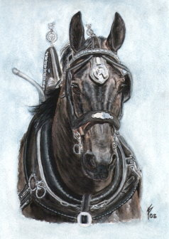 horse portraits watercolor